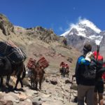 019_Aconcagua_Ameghino_Valley_Ascent-92